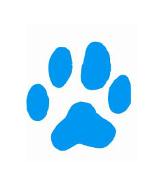 Doggy Sitting Sydney Pawprint